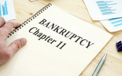 Processo de Falência decretado por lojas de grandes marcas