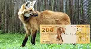 Banco Central vai lançar cédula de R$ 200 no final de agosto Nova cédula da família do Real será ilustrada com a imagem do lobo-guará e terá o valor de, aproximadamente, US$ 39