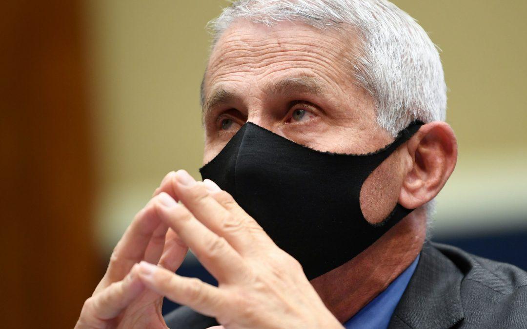 Dr Fauci criticou propagação de vírus durante protestos