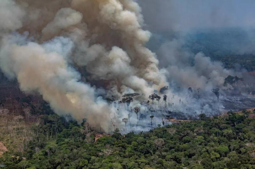 MPF pede à Justiça que exija ações imediatas do governo contra desmatamento na Amazônia
