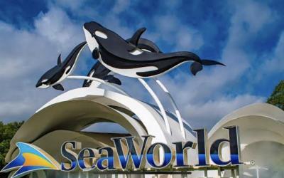 SeaWorld confirma a rescisão de alguns funcionários licenciados