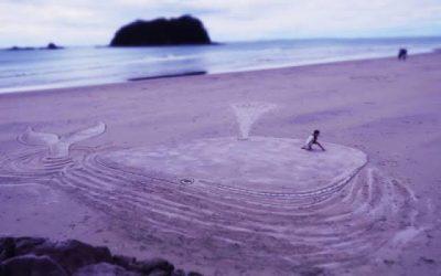 A pouco conhecida praia de areia roxa do Canadá