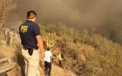 Incêndio florestal no Chile tira 25 mil pessoas de suas casas