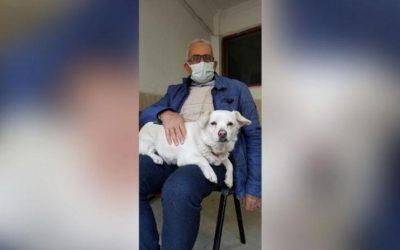 Cadela espera 6 dias na porta de hospital enquanto dono se recuperava na Turquia