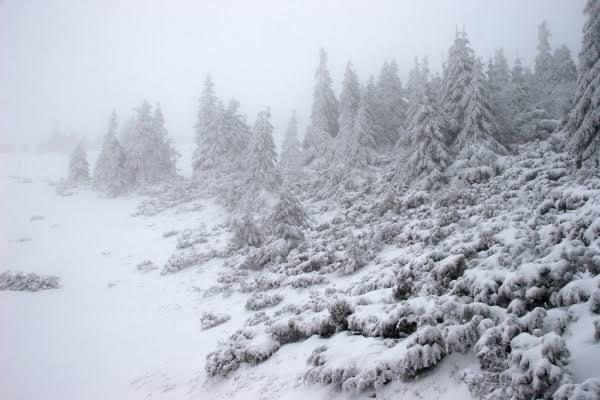 O aquecimento estratosférico repentino pode significar tempestades de inverno selvagens à frente, no hemisfério Norte